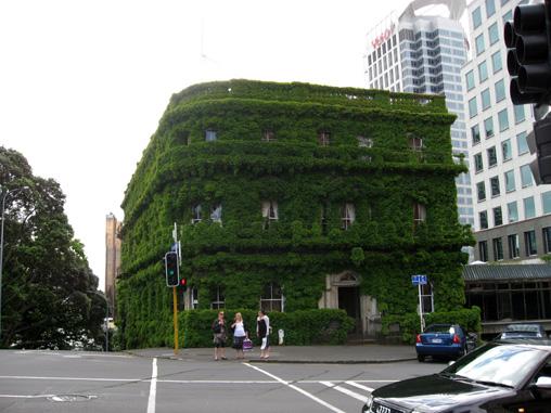 Auckland11