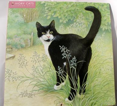 Ivorycat2