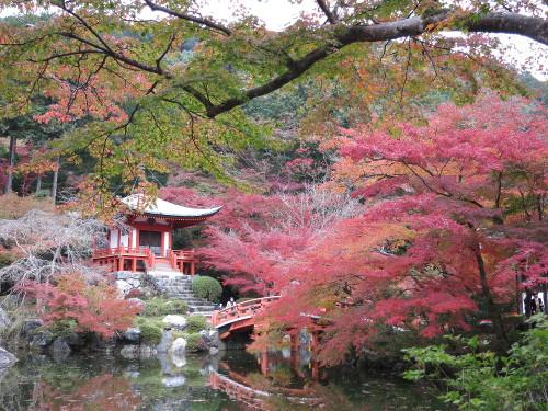 Kyoto20141101